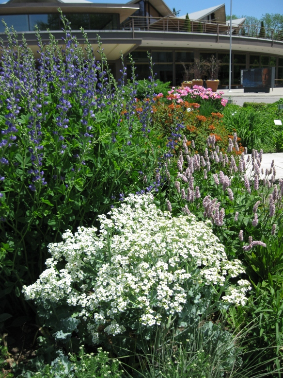 Stratford Festival Gardens | So much to look forward to!